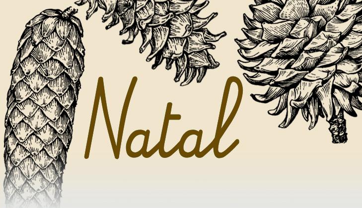 ESPECIAL NATAL 2015