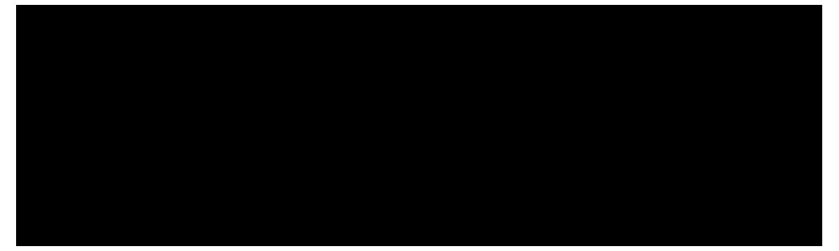 Rocquinho Digital