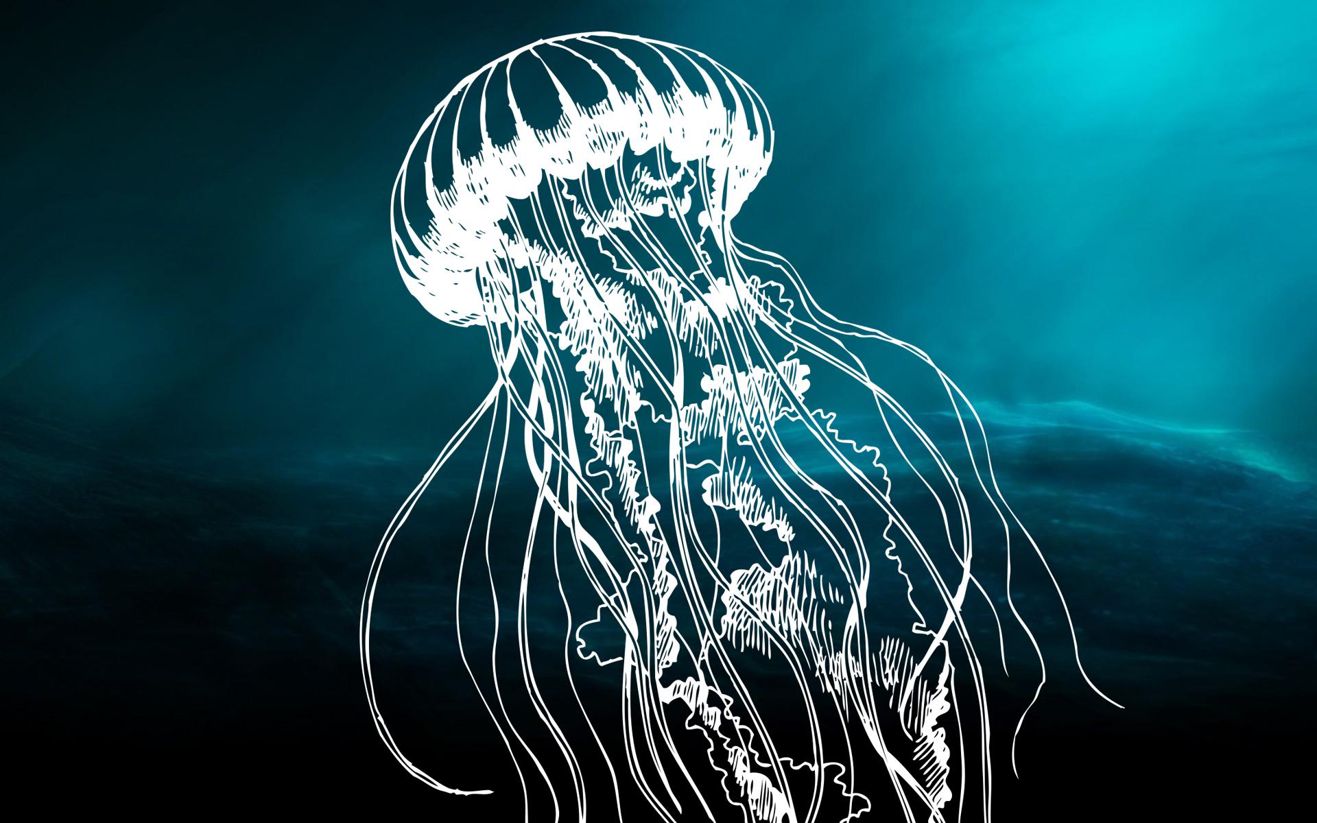 fundo do mar_1